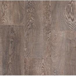 Titanium Oak 557