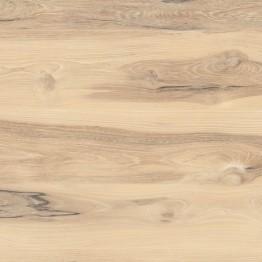 Oak Adria 2057