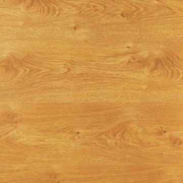 Alaska Oak  429